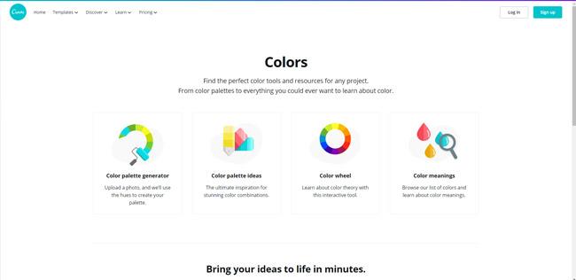 canva paleta cores